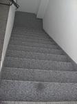 Hamm: Außentreppe mit Colorquarz M1005